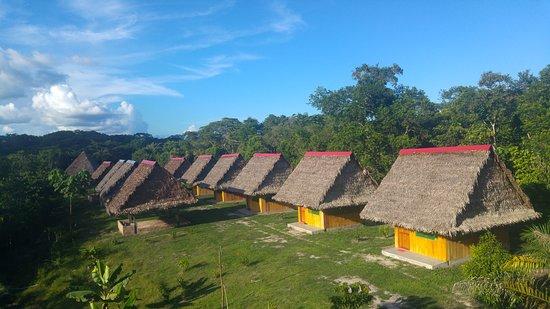 Selva Madre Ayahuasca Retreat