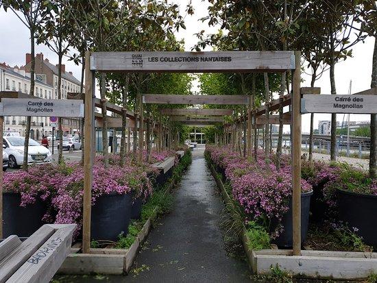 Quai des Plantes