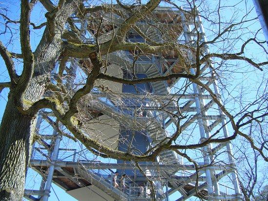 Beelitz-Heilstätten: mit blick zum turm
