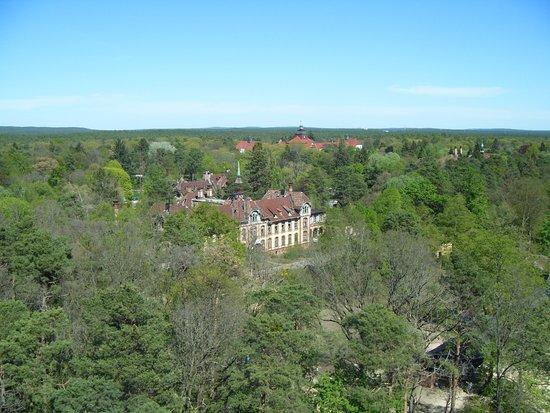 Beelitz-Heilstätten: blick vom turm