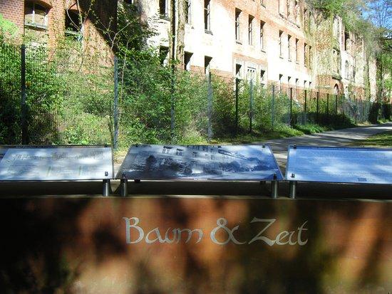 Beelitz-Heilstätten: haus und baum zeit