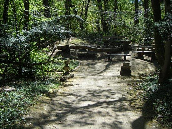 Beelitz-Heilstätten: park