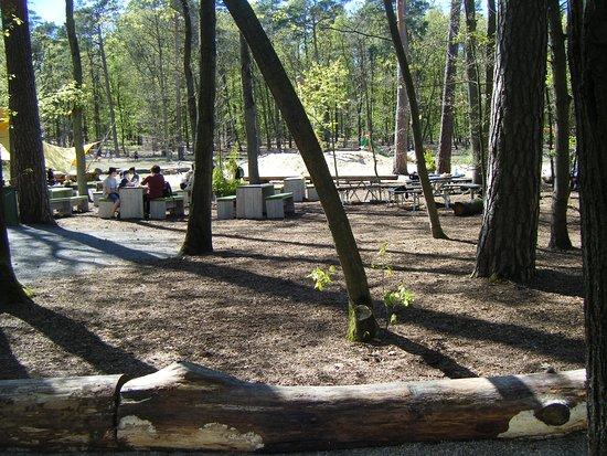 Beelitz-Heilstätten: im barfuss park