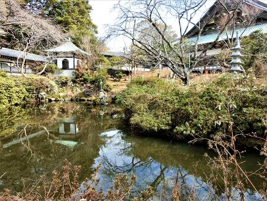 Yugyo-ji Temple Hojoike