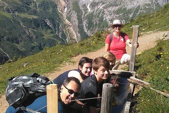 阿尔卑斯山心脏地带私人徒步之旅,提供卢塞恩往返交通
