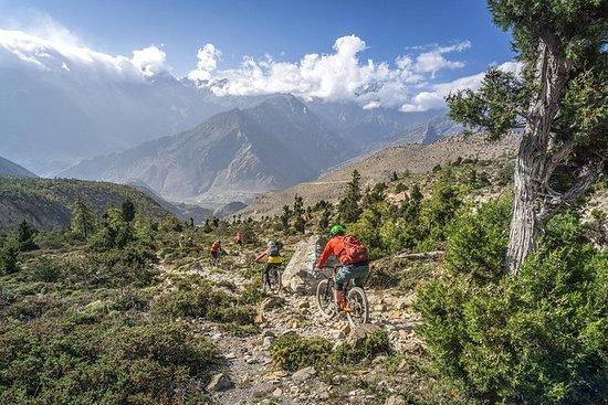 1 Day Kathmandu Valley Sykling Tour...