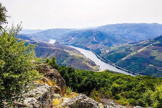 Tour privada no vale do Douro com guia...