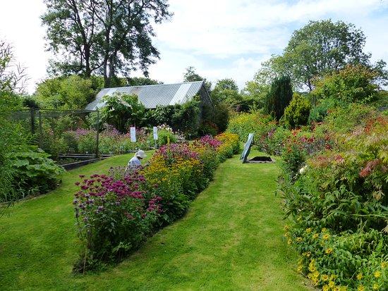 Glyn Bach Gardens