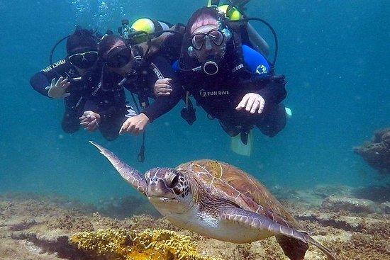 Diving for Beginners - Búzios RJ: Scuba Diving for Beginners