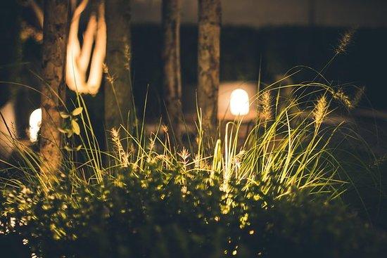 En nat på Giardini