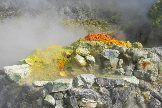 Vulkaner og vine