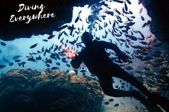 SID15 - Discover Scuba Diving Sal...