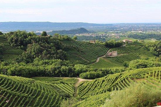 Prosecco vin tur. Halv dag