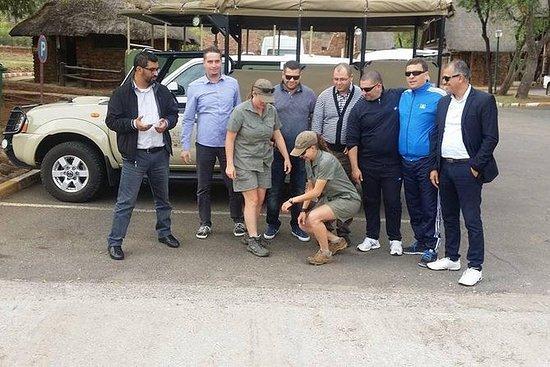 Tour Pilanesberg (Día Completo)