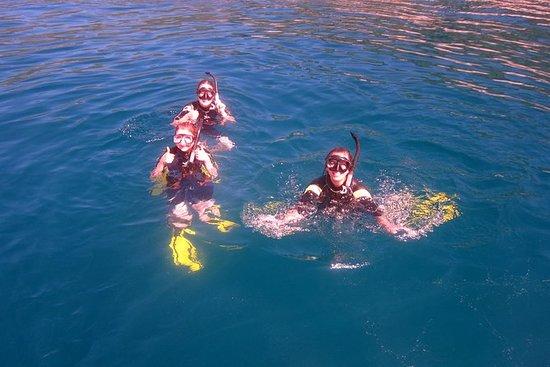 在Hon Mun岛浮潜