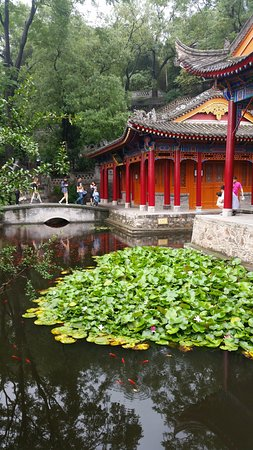 Admission Ticket of Huaqing Palace and Imperial Hot Springs Bath: Visitors admire the ponds at Huaqing Palace.