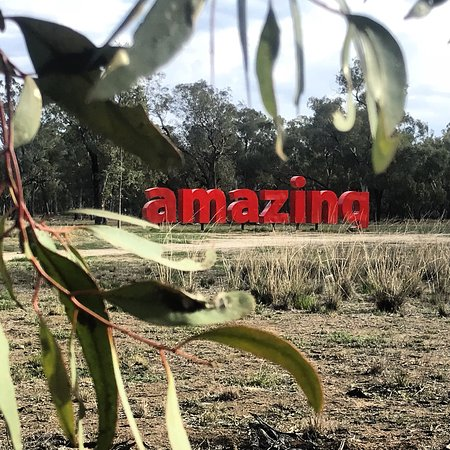 Forbes, Úc: Amazing really...