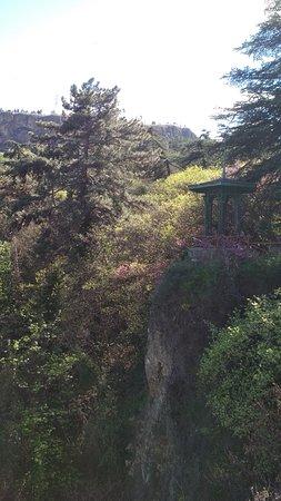 ботанический сад в Тбилиси