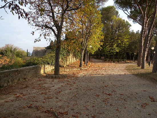 Parco della Fortezza Medicea: jhghjghj