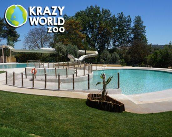 odisseias piscina