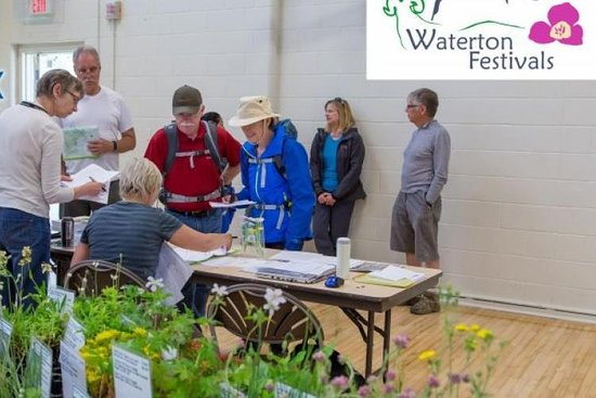 ‪Waterton Wildflower Festival‬