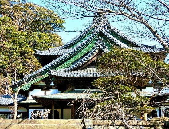 Ryuko-ji Temple Ojoin