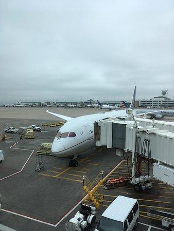 United Airlines: デンバー到着