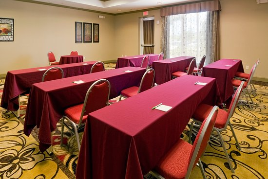 Holiday Inn Ft. Myers Airport-Town Center: Meeting room