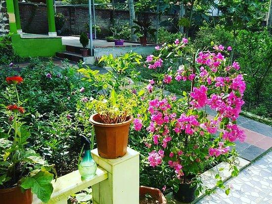 Thung Lung Hoa Phu Quy