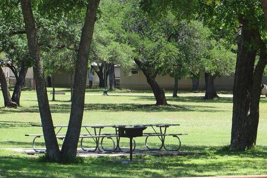 Lion's Foundation Park