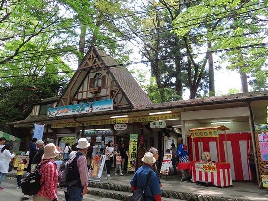 Mt. Takao, Monkey zoo, Wild Grass Garden