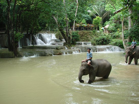 Far North Mountains of Laos, a great place for adventure trekking - Local village Elephant near Luang Prabang in laos