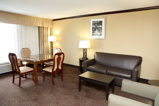 Holiday Inn Chicago Oakbrook: Suite
