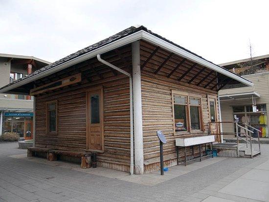 Bison Courtyard