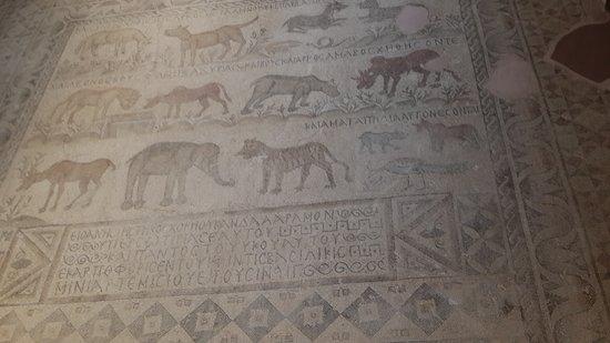 Hayvan sözlüğü gibi bir mozaik.