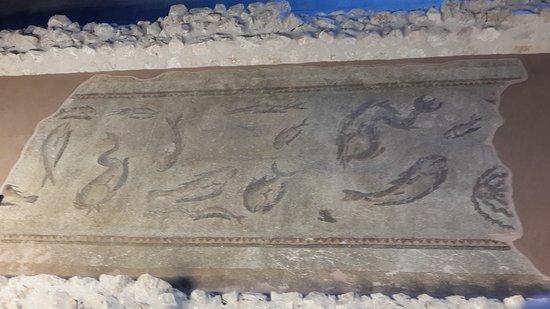 Balıklı mozaik.