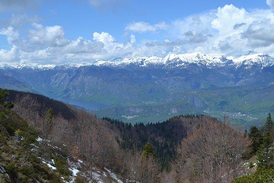 View over the Bohinj Lake
