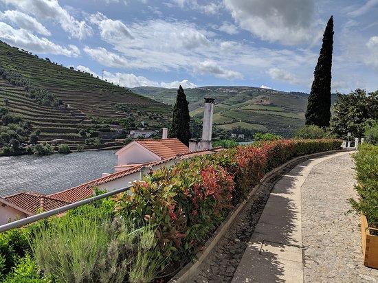 Landscape - Quinta de la Rosa Photo