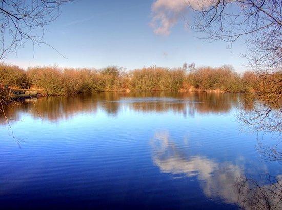 Farndon Ponds