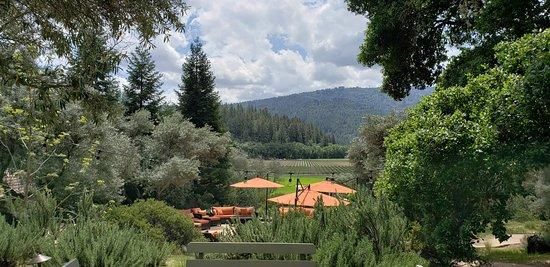 Kenefick Ranch Vineyard & Winery