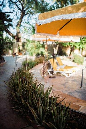 Pool - Picture of The Good House, Desert Hot Springs - Tripadvisor