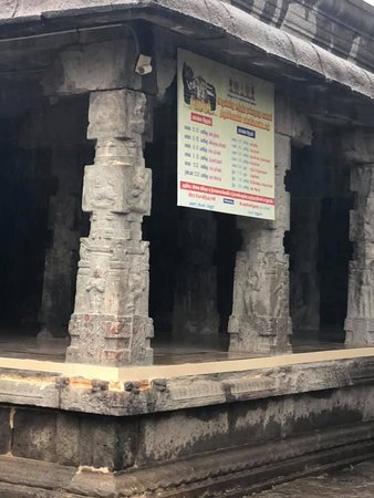 Vellore District, อินเดีย: Pillars of the temple