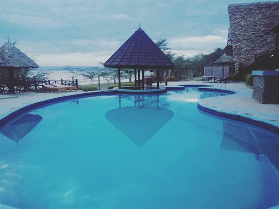 Gilgil, Кения: While at Lake Naivasha, Sirville lodge offers the ultimate experience. Situated next to Lake Elementaita, with great view of the lake, variety of  bird species can be spotted. Tranquility and outstanding service
