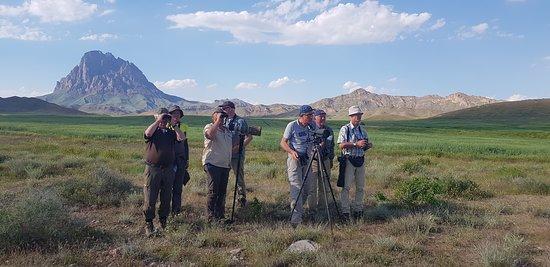 Nakhchivan Travel: Birdwatching in Nakhchivan Autonomous Republic/Azerbaijan.