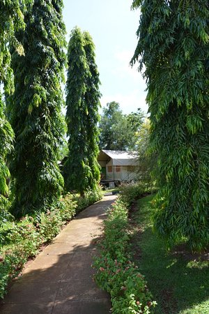 A beautifully kept guesthouse, with a view of Lake Victoria - the sourcelake of the Nile