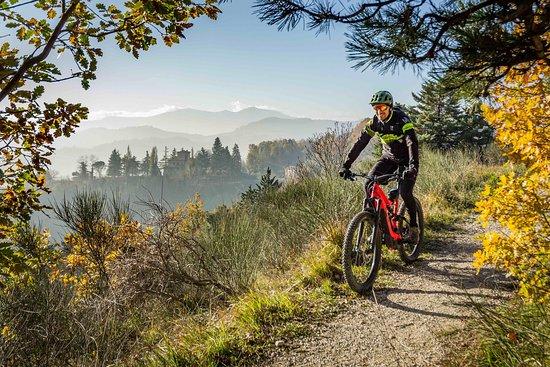 Urbino e-Bike Tour