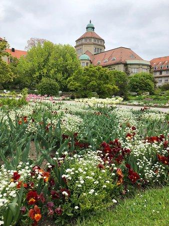 Botanischer Garten München Nymphenburg Aktuelle 2019 Lohnt Es