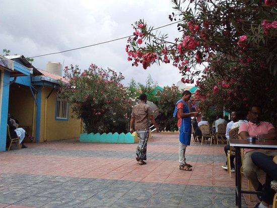 Jijiga, เอธิโอเปีย: Breezy courtyard