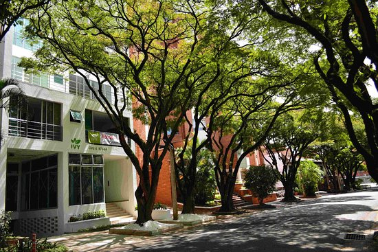 Ivy Laureles Apts, Cowork & Wellness - Medellin Massages