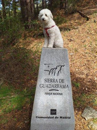 San Mames, สเปน: San Mamés